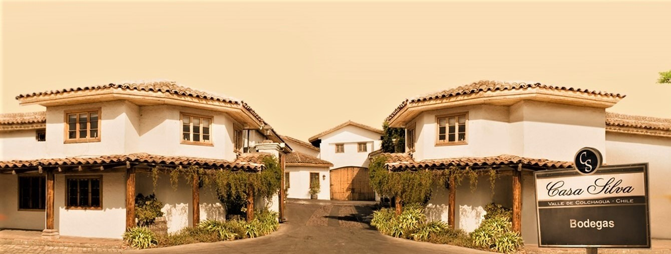 Casa Silva - Los Lingues - 2018