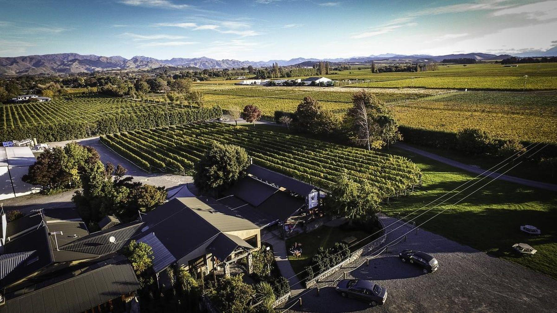 Forrest - Marlborough - Nueva Zelanda - 2020