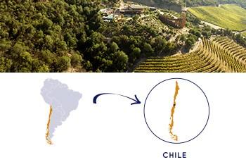Canto de Apalta - Rapel - Chile - 2011