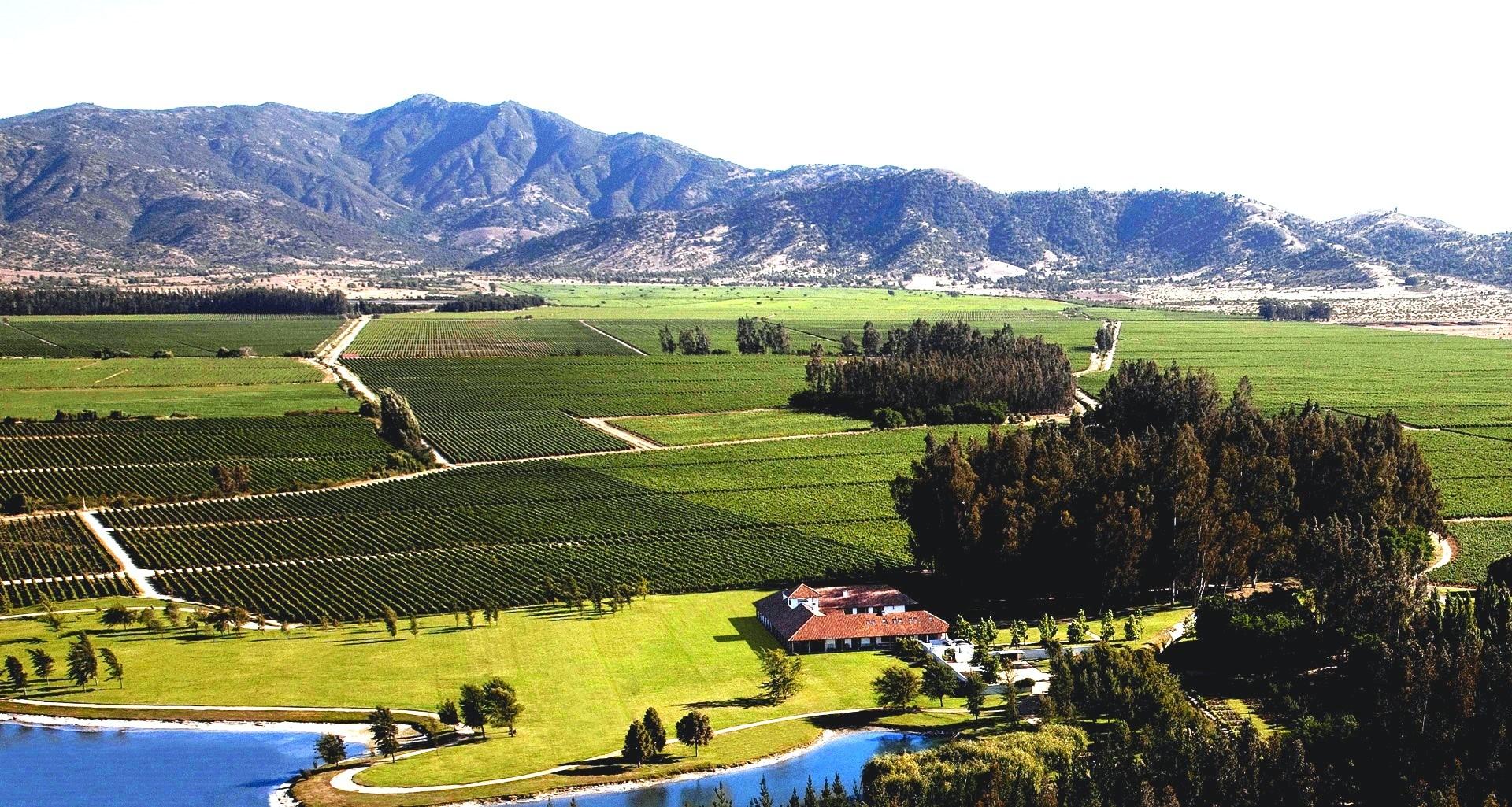 Los Vascos - Grande Reserve - Chile - 2019