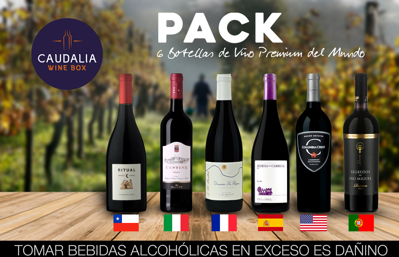 Pack especial de 6 vinos Premium del mundo
