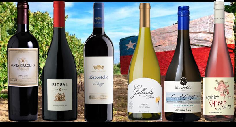 Pack selección Vinos de Chile