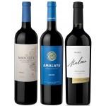 Pack especial Banbif: 3 botellas de Malbec Argentino