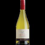 Viña San Pedro - 1865 - Sauvignon Blanc-  2015