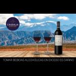 Pack Club S Scotiabank 1 botella de vino Amancaya + 2 copas de cristal Eisch