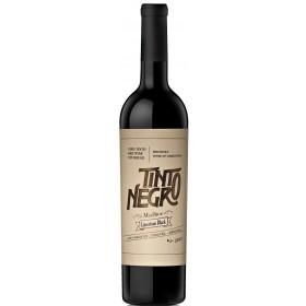 Tinto Negro - Limestone Block - Mendoza - Argentina - 2016