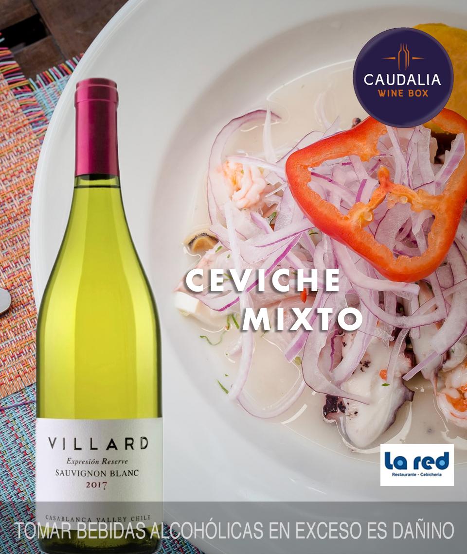 Caudalia wine Box Septiembre 2019 Chile Sauvignon Blanc