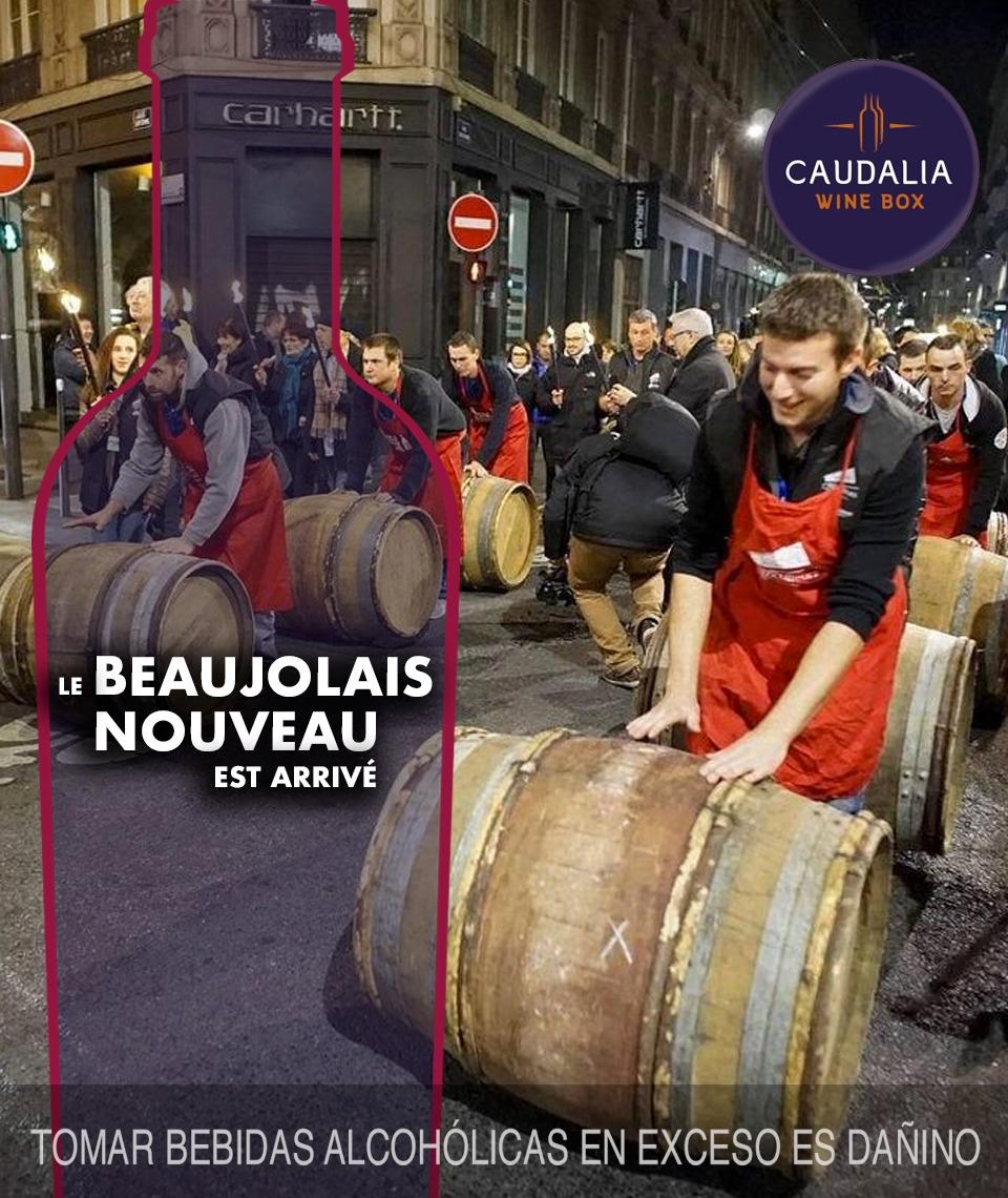 beaujolais Nouveau 2019 Caudalia