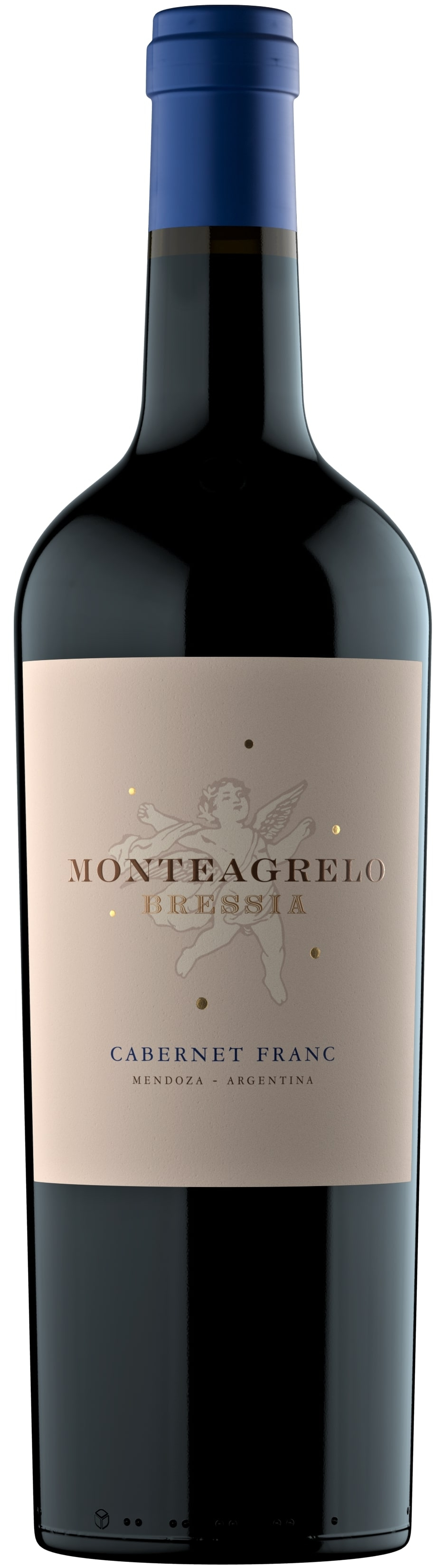 Caudalia wine Box Diciembre 2020 Cabernet Franc Argentina Bressia