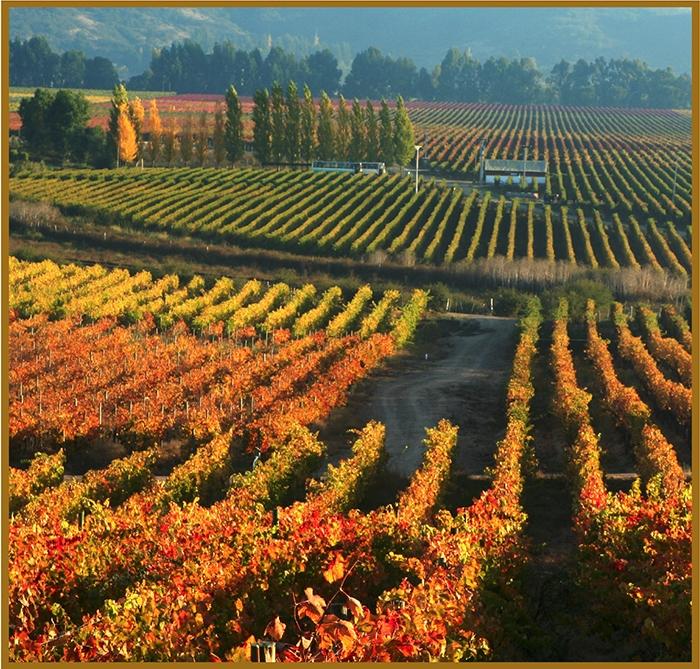 Mundo del vino Caudalia IWine Box