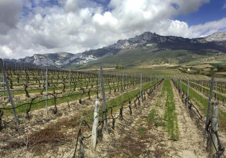 Caudalia Wine Box España La Rioja Pujanza