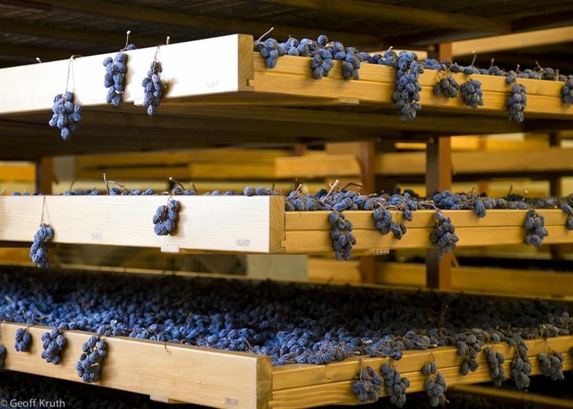 Vinos de Italia Caudalia 3