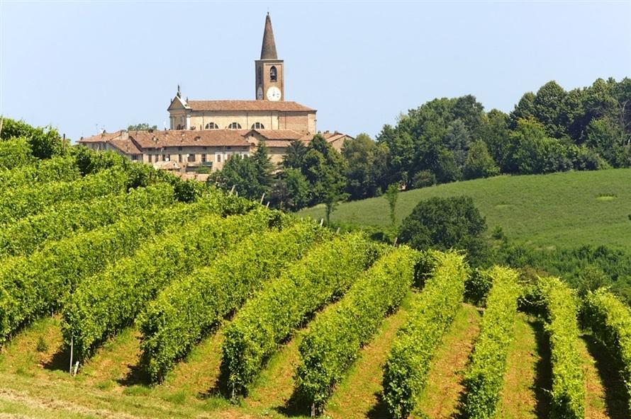 Vinos de Italia Caudalia 6