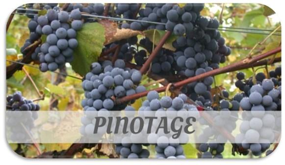 Cepa Pinotage, Caudalia Wine Box Mayo 2017, Sudáfrica