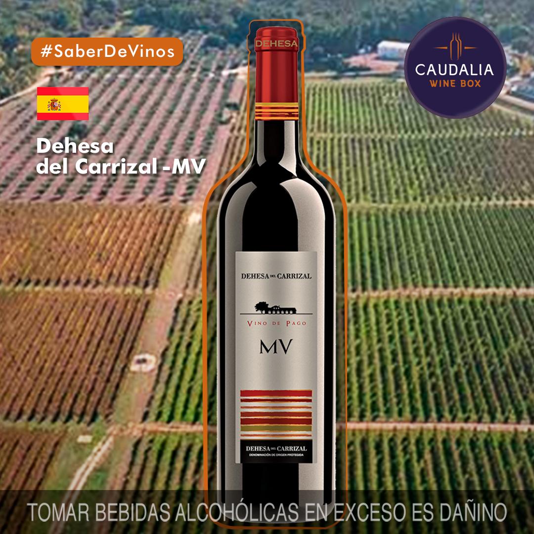 Caudalia Wine Box Octubre 2019 España Dehesa del Carrizal MV